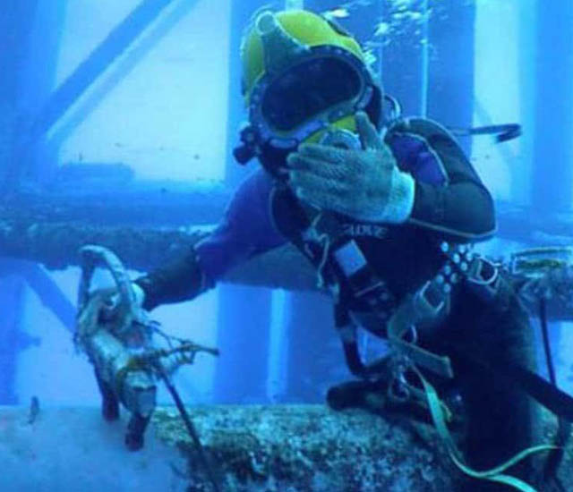 diving rov industry