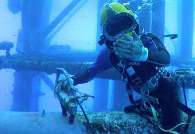 diving rov