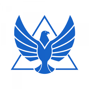 HawkPro Logo
